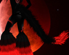 Eclipse Tail M/F