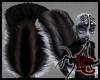 Fluffy Skunk Tail