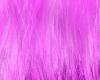 (e) pink patricia