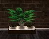 SPORTS PLANT