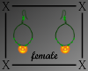 .X. Pumpkin Hoops F