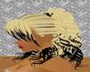 (O) Black&Blonde Bangs