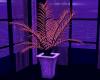Galaxy Plant