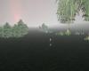 Mystic Meadowlands
