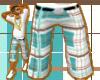 [LNR] Stylez Brown Short