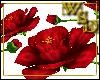 Floor Roses - Red