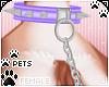 [Pets]LeashCollar|purple