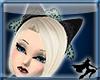 Onyx Lolita Kitty