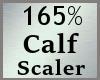 Scale Calf Calve 165% MA