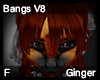 Ginger Bangs V8
