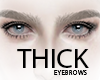 THICK Eyebrows .03