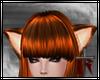 Ginger Ears