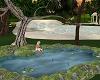 Koi Pond with Poses