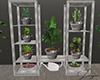 Little lux plants
