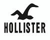Hollister Window Sign