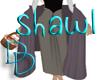 |DD| PeasantAurora Shawl