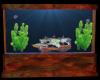 aquariumshipwreck discus