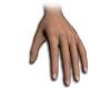 NV RealDeal Hands