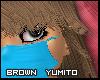 Fly) Walnut Yumito