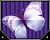 Tiv| Flutter *Butterfly*