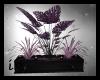 (IK)Purple Plant devider