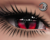 Feline Crimson Eyes F