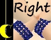 Sapphire Bracelet (R)