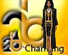 gold/black Judge robe
