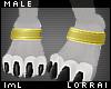 lmL Anklet Gold M