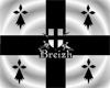 drapeau flag breton