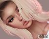 Prim | Syfla Dime