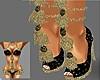 Golden Stars Shoes