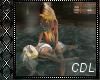 !C* Relax Couple Swim II