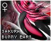 !T Sakura bunny ears