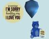 I'm Sorry Honey Bear