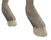 Ivory hooves