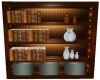 Executive Bookshelf  1