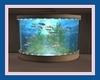 !D! R Island Aquarium