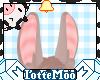 Long Brown Bunny Ears