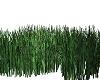 Animated Grass