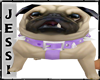 ! J - Naughty Pug - Anim