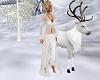 white raindeer