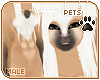 [Pets] Phar | abs fur