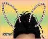D- Diamond R Bunny Ears