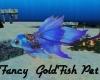 Fancy GoldFish Pet