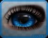 🐺 Anna | Eyes v1