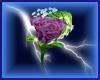 lavender tux flower (m)