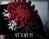 +Rose Spirit Flower Dew+