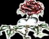 heart family groom tux