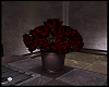 Ev-Roses